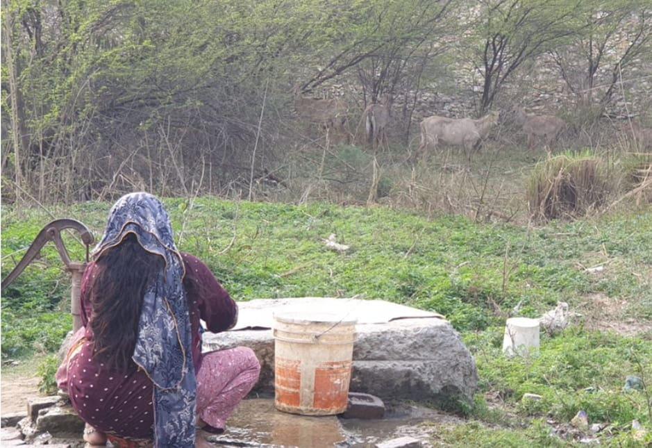 signature camp wash campaign hai 5